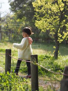 草の上に立っている小さな男の子の写真・画像素材[2260921]
