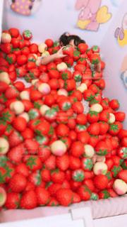 果物と野菜のグループの写真・画像素材[2279330]