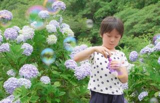 庭に立っている少女の写真・画像素材[3374425]