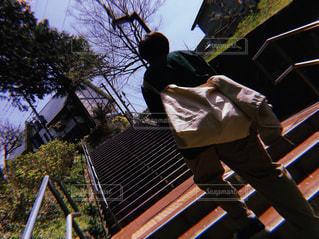 自然,階段,後ろ姿,日光,ぼかし,樹木,道,人,後姿,旅行,歩道,坂,ゆっくり,後ろ,フィルムカメラ,草木,おしゃれ,ガーデン