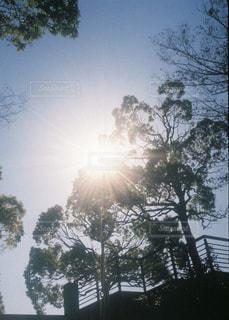 雲,綺麗,平和,フィルム,お散歩,フィルムカメラ,フィルム写真,おしゃれ,フィルムフォト