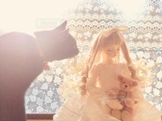 猫,動物,屋内,かわいい,人形,明るい,ベージュ,輝く,日中,ドール,ミルクティー色