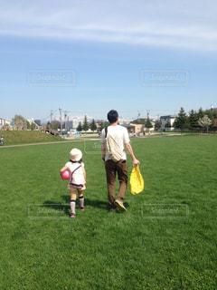 公園,夏,芝生,親子,晴れ,晴天,後ろ姿,女の子,背中,パパ