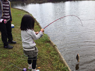 魚,屋外,後ろ姿,女の子,背中,釣り,鯉