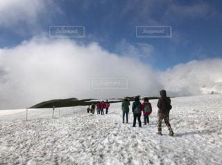 雪,アルプス,立山,雪上
