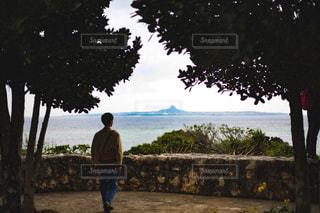 自然,風景,海,空,島,水族館