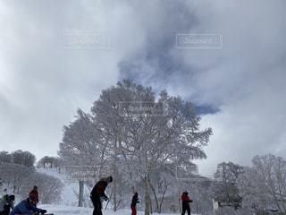 自然,風景,アウトドア,空,冬,スポーツ,雪,屋外,樹木,人物,スキー,ゲレンデ,レジャー,日中
