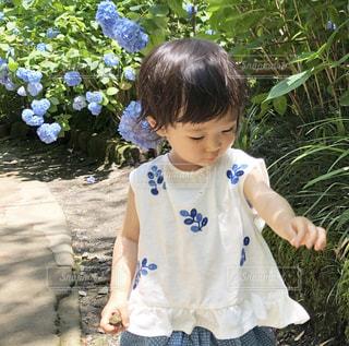 太陽,青,日焼け,女の子,紫陽花,ブルー,シャツ,夏服,半袖