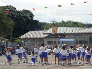 子供,小学生,校庭,運動会,小学校,玉入れ,競技,学校行事