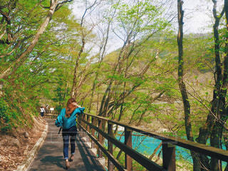 女性,20代,空,木,屋外,太陽,青,水,葉っぱ,散歩,川,景観,草木