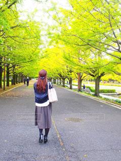 自然,風景,公園,秋,屋外,後ろ姿,散歩,女の子,スカート,道,人,ロングヘアー,みどり