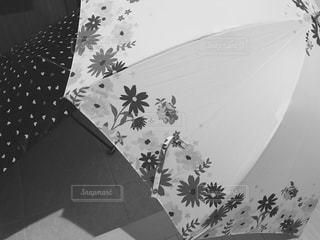傘,玄関,梅雨,干す,ふたつ