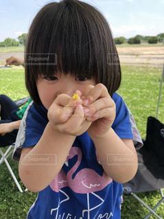 いくつかの草を食べている小さな女の子の写真・画像素材[2133335]