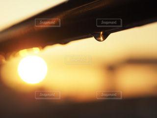 風景,空,屋外,太陽,朝日,水,水滴,景色,ぼかし,キラキラ,水玉,物干し竿,雨上がり,雫,朝陽,明るい,オレンジ色,しずく
