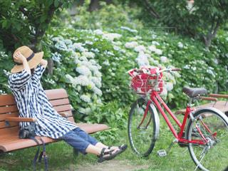 紫陽花が咲く河川敷での写真・画像素材[2141316]