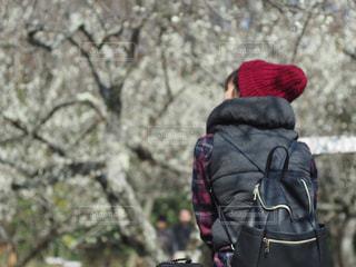 梅のお花見の写真・画像素材[2164567]