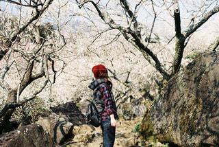 春の訪れの写真・画像素材[2216530]