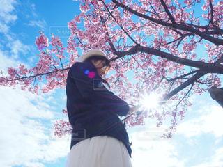 桜セルフィーの写真・画像素材[2267778]
