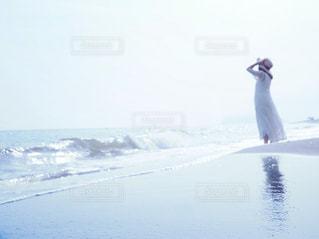 キラキラの夏の写真・画像素材[2328423]