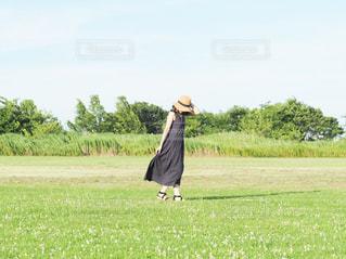 夏の午後の写真・画像素材[2377327]