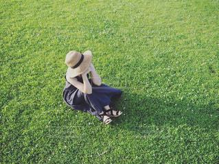 緑のキャンパスの写真・画像素材[2377331]