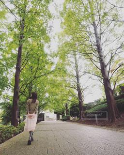 散歩の写真・画像素材[2513321]