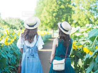 夏の思い出の写真・画像素材[2513800]