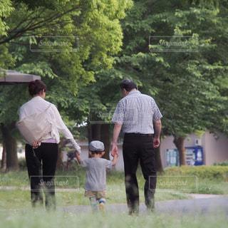 仲良く並んでお散歩の写真・画像素材[2513808]