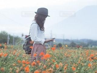 オレンジ色の花の後ろに乗っている人の写真・画像素材[2694082]