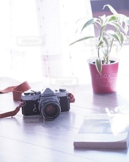 休日の穏やかな時間の写真・画像素材[2723149]