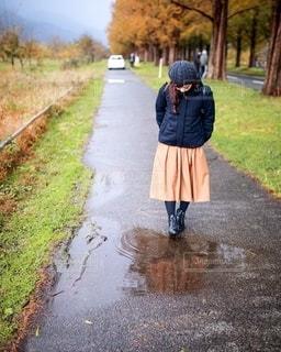 冬の雨上がりの写真・画像素材[2776439]