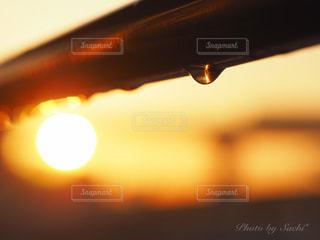 朝陽と雫の写真・画像素材[2857106]