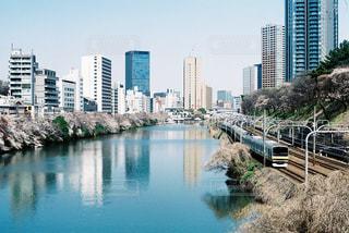 春の神田川の写真・画像素材[2905892]