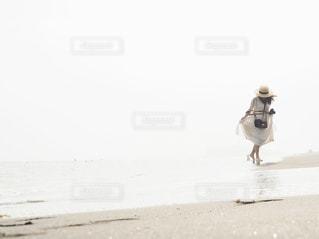 浜辺の写真・画像素材[2983549]