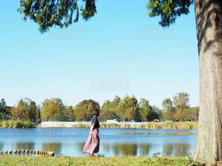 公園さんぽの写真・画像素材[3242393]