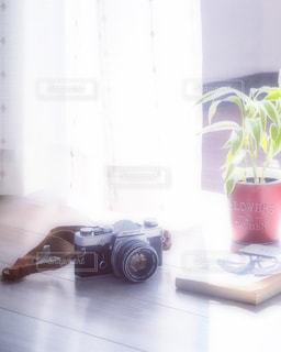 休日の写真・画像素材[3314427]