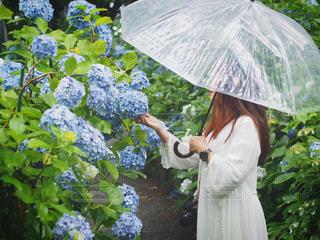 傘を持っている人の写真・画像素材[3374929]