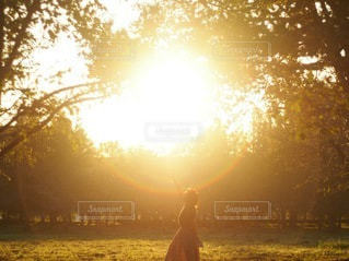 夕陽パワーの写真・画像素材[3394843]