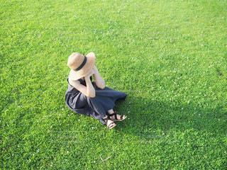 芝生の上での写真・画像素材[3401779]