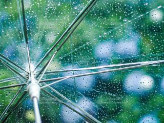 傘越し紫陽花の写真・画像素材[3670253]