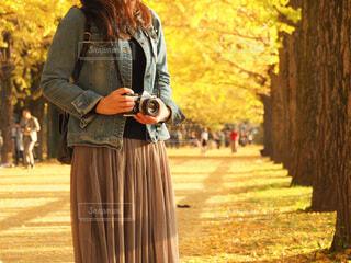 秋の銀杏並木での写真・画像素材[3695951]