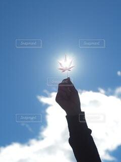 曇りの日に空を飛んでいる人の写真・画像素材[3873320]