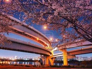 橋のクローズアップの写真・画像素材[4065576]