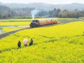 煙が出ている線路上の電車の写真・画像素材[4094466]