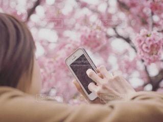 携帯電話を持っている女性の写真・画像素材[4213041]