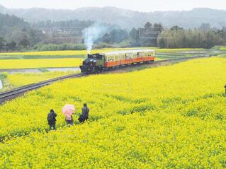 煙が出ている線路上の電車の写真・画像素材[4295364]