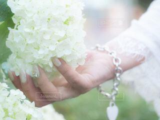 花を持つ手の写真・画像素材[4314531]