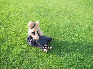 芝生で覆われた畑の上に座っているテディベアの写真・画像素材[4427391]