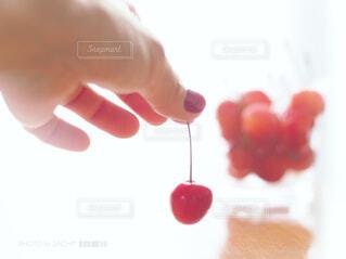 果物のクローズアップの写真・画像素材[4448446]