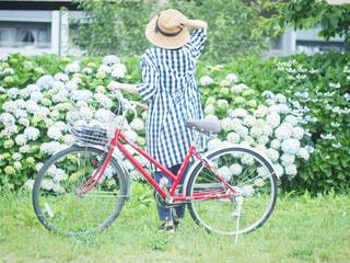 庭で自転車を持っている人の写真・画像素材[4556319]
